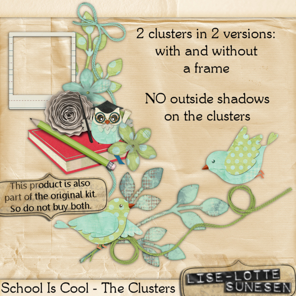 School Is Cool - The Clusters
